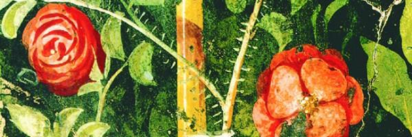 ΕΠΙΚΟΥΡΟΣ: Η ΣΤΡΑΤΗΓΙΚΗ ΤΟΥ ΕΥΔΑΙΜΟΝΑ ΒΙΟΥ (Περί Αιρέσεων και Φυγών)